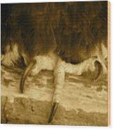 Liberty's Grasp Wood Print