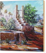 Libyan Farm Wood Print
