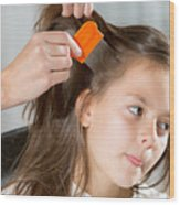 Lice In Head Wood Print