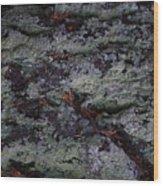 Lichen Texture Wood Print