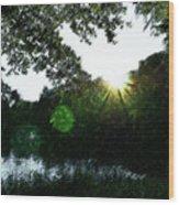 Licht Wood Print