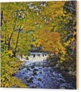 Lidia's Falls Wood Print