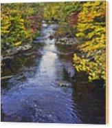 Lidia's Hidden Creek Wood Print