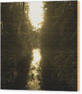 Liesijoki 3 Wood Print