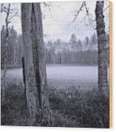 Liesilampi 4 Wood Print