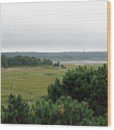 Lieutenant Island Marsh Wood Print