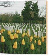 Life And Death At Arlington Wood Print