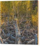 Life-death-and-renewal Wood Print