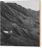 Life In Bromo Wood Print
