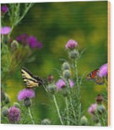 Life In The Meadow Wood Print