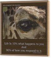 Life Is Going Eye To Eye Sometimes Wood Print
