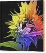 Life Is Like A Rainbow ... Wood Print by Gwyn Newcombe