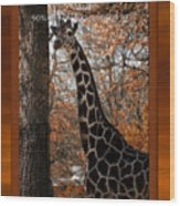 Life Is Standing Tall Wood Print