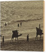 Life Near The Arabian Sea Wood Print