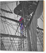 Life On The Ropes Wood Print