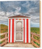 Lifeguard Hut Wood Print