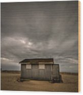 Lifeguard Shack Wood Print by Evelina Kremsdorf