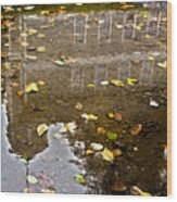 Lifes Past Reflection Wood Print