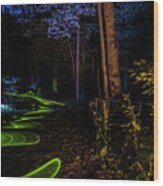 Lighit Painted Forest Scene Wood Print
