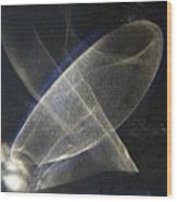 ''light And Blue Disc No.34'', Thu--10sep2015 Wood Print