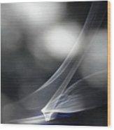 ''light And Blue Disc No.86'', Mon--14sep2015 Wood Print