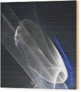 Light And Blue Disc No.88, Mon--14sep2015 Wood Print
