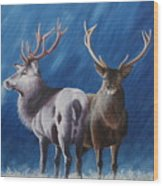 Light And Dark Stags Wood Print
