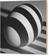 Light And Egg 19 Wood Print