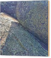 Light And Lichen On Eroded Basalt Wood Print