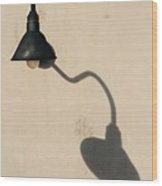 Light Angle Wood Print by Dan Holm