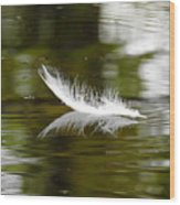 Light As A Feather Wood Print