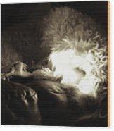 Light As He Tries To Sleep Wood Print