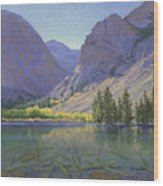 Light At Parker Lake Wood Print
