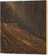 Light Breaking Thru Wood Print by Andrew Soundarajan