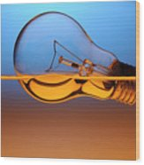 Light Bulb In Water Wood Print