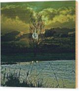 Light-captor Wood Print