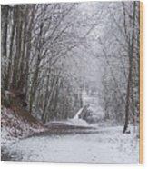 Light Dusting Of Snow Wood Print