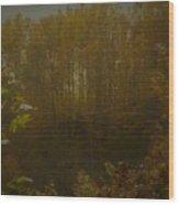 Light In Autumn Wood Print
