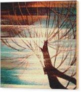 Light Melody Wood Print