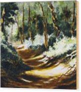 Light N Shade Wood Print