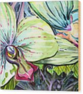 Light Of Orchids Wood Print