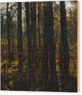 Light Of The Virgin Morning Wood Print
