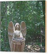 Light On The Angel In My Backyard Wood Print