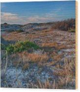 Light On The Dunes Wood Print