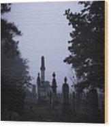Light On The Stones Wood Print