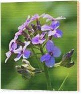 Light Purple Flowers  Wood Print