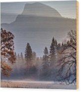 Light Rays In Yosemite Ground Fog Wood Print