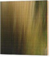 Light Series 5 Wood Print