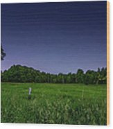 Light Show - Fireflies Vs The Stars Wood Print
