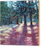 Light Through The Pines Wood Print